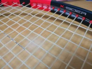 ガットの縦糸・横糸